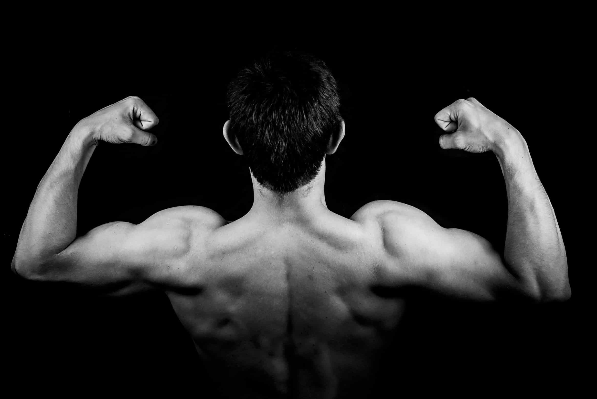Muskelaufbau zum Zunehmen